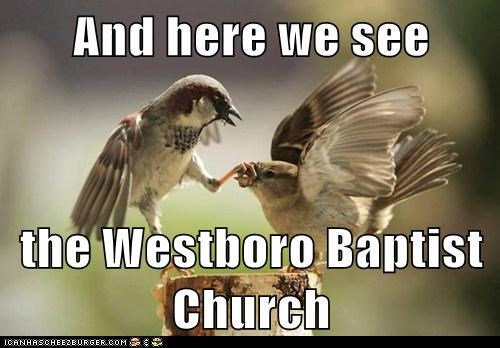 And here we see  the Westboro Baptist Church