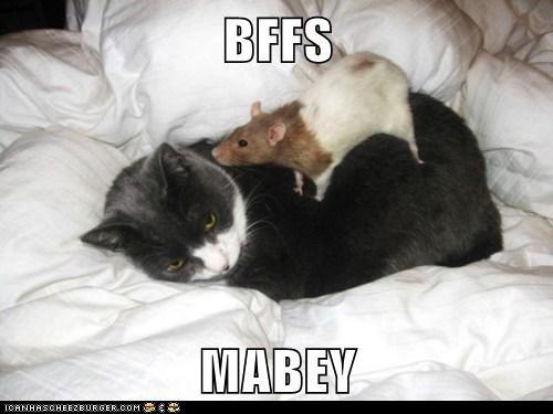 BFFS  MABEY