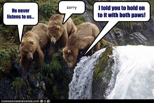 bears,listening,waterfall,sorry,dropped,fell
