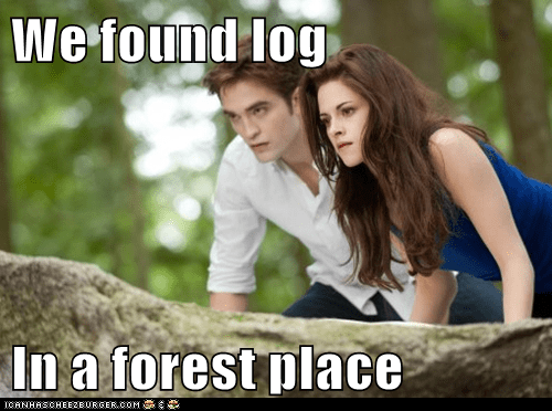 We found log  In a forest place