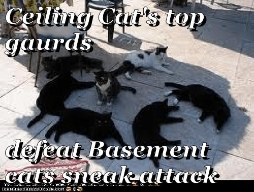 Ceiling Cat's top gaurds  defeat Basement cats sneak attack