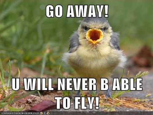 GO AWAY!  U WILL NEVER B ABLE TO FLY!