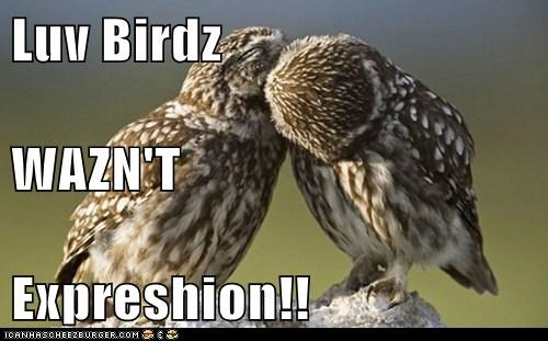 Luv Birdz WAZN'T Expreshion!!