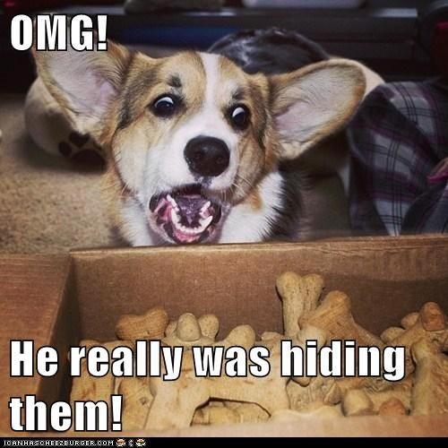 OMG!  He really was hiding them!