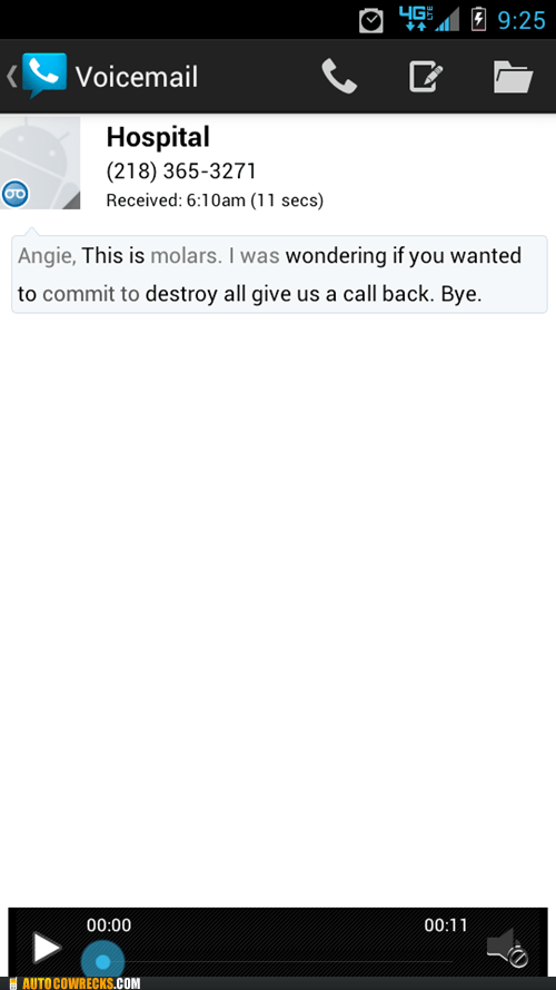 What Are You Trying to Say Google Voice?