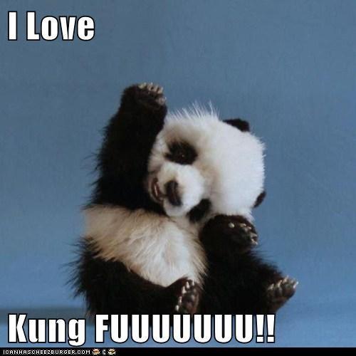 I Love  Kung FUUUUUUU!!