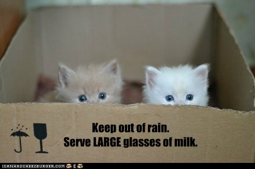 Keep out of rain. Serve LARGE glasses of milk.
