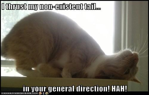 I thrust my non-existent tail...  in your general direction! HAH!