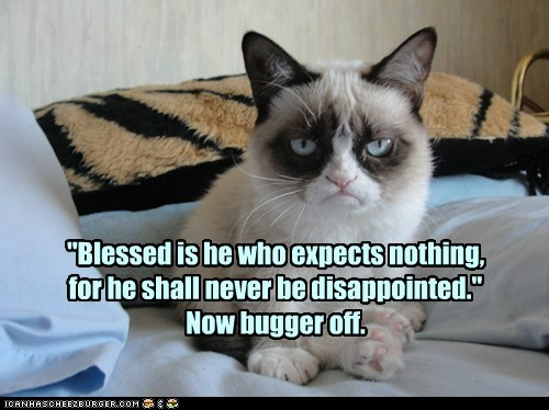 Grumpy Cat philosophy.