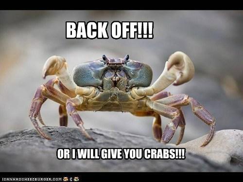 crabs,puns,STDs,threat,back off