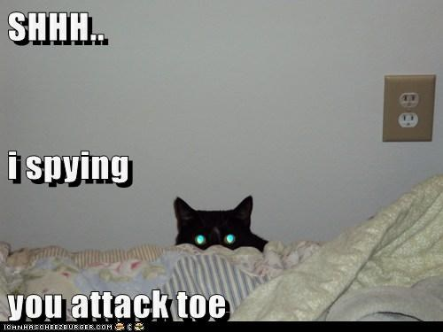 SHHH.. i spying you attack toe