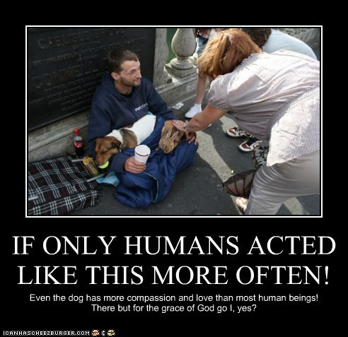 IF ONLY HUMANS ACTED LIKE THIS MORE OFTEN!