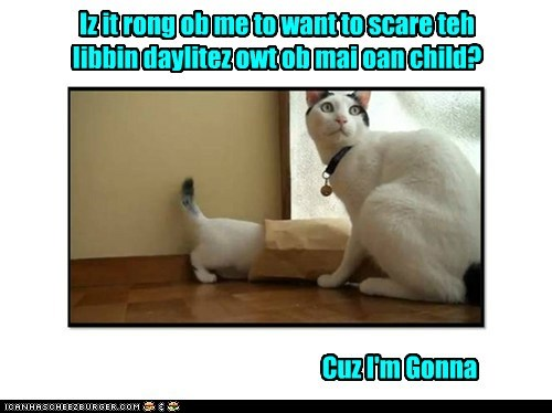 child,scare,captions,surprise,mom,Cats