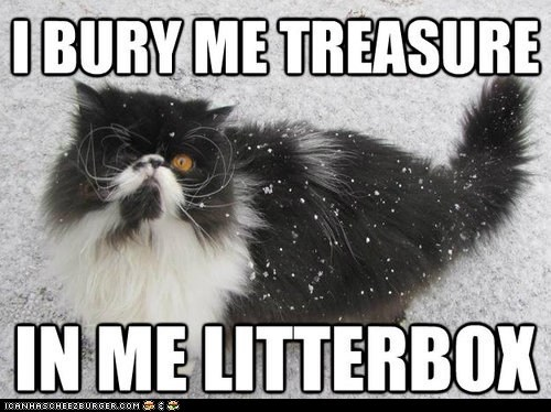litterbox,litter boxes,captions,pirate cat,Memes,treasure,pirates,Cats