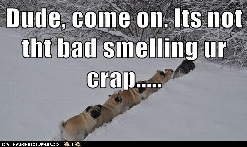Dude, come on. Its not tht bad smelling ur crap.....