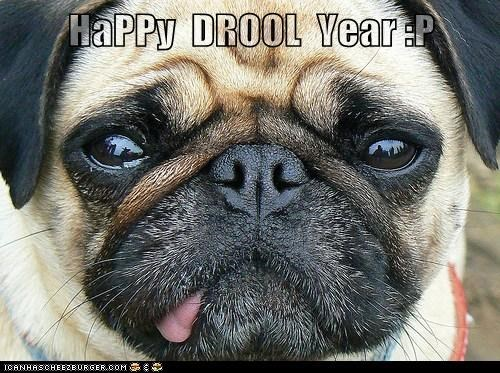 HaPPy  DROOL  Year :P