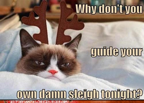 christmas,reindeer,tarder sauce,Grumpy Cat,funny,holidays