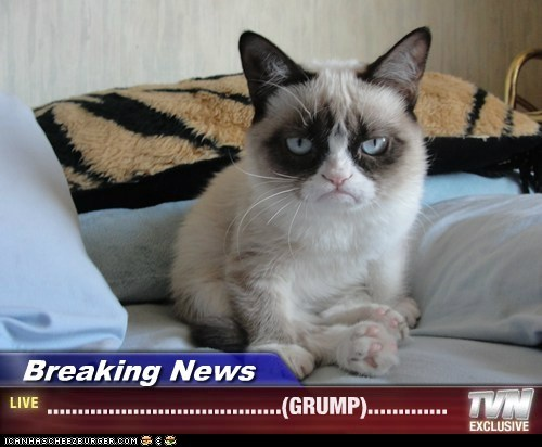 Breaking News - ......................................(GRUMP).............