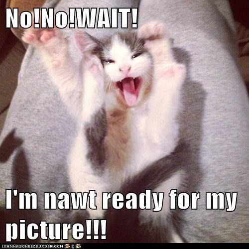 No!No!WAIT!  I'm nawt ready for my picture!!!