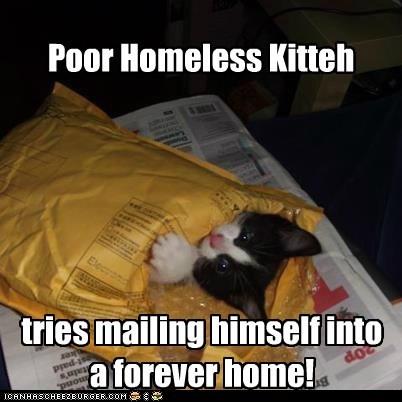 PHK needs schooling to help him read addresses!