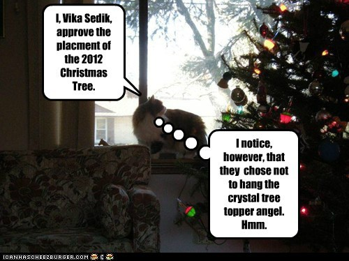 I, Vika Sedik, approve the placment of the 2012 Christmas Tree.