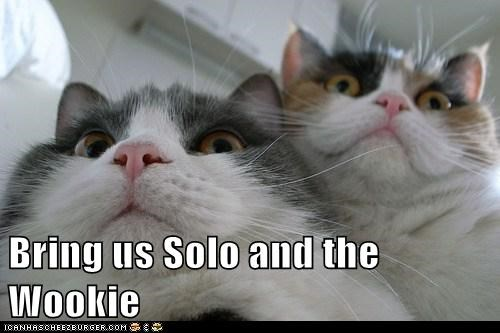 Bring us Solo and the Wookie
