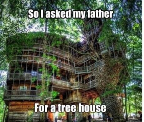 tree house,engineers,dad