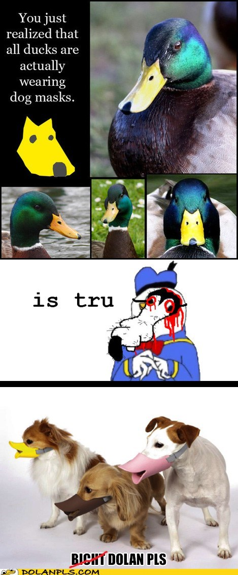 Uncel Dolan iz nevar sleep nao