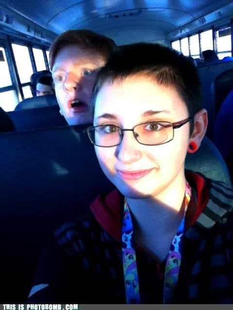 school,bus