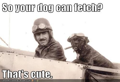 So your dog can fetch?  That's cute.