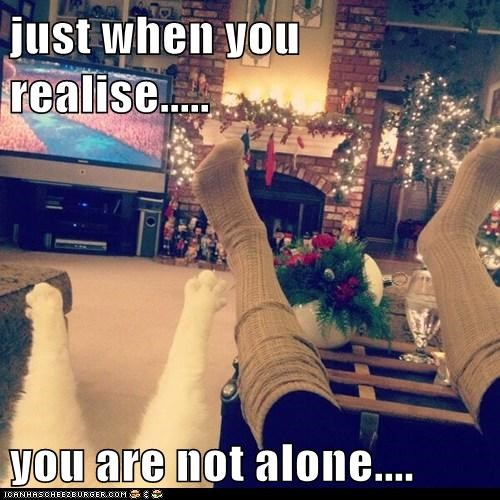 just when you realise.....  you are not alone....