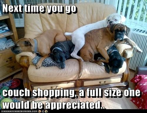 Next time you go   couch shopping, a full size one would be appreciated..
