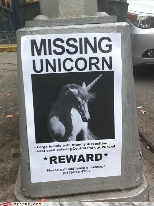 missing unicorn,reward,unicorns,central park,lost