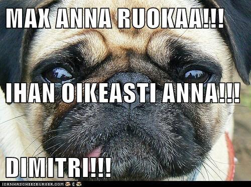 MAX ANNA RUOKAA!!! IHAN OIKEASTI ANNA!!! DIMITRI!!!