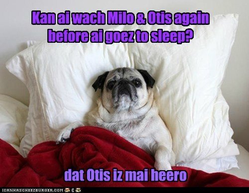 Kan ai wach Milo & Otis again before ai goez to sleep?