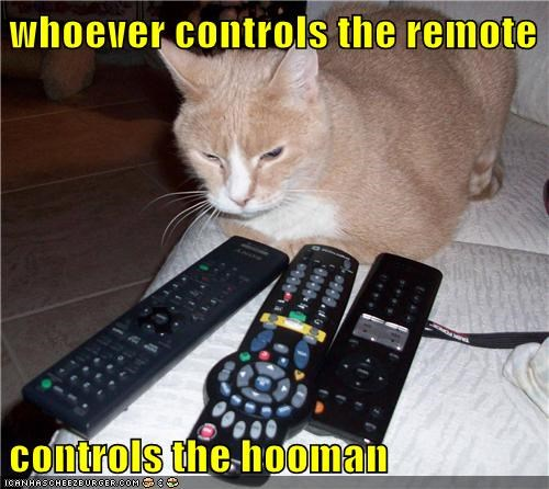 whoever controls the remote  controls the hooman