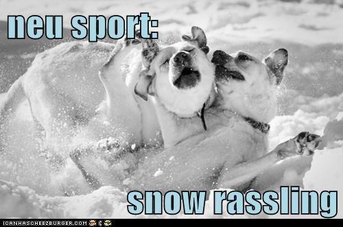 neu sport:  snow rassling