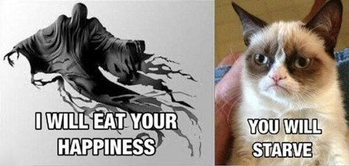 tardar sauce,Harry Potter,dementors,starving,Grumpy Cat,tard,happiness