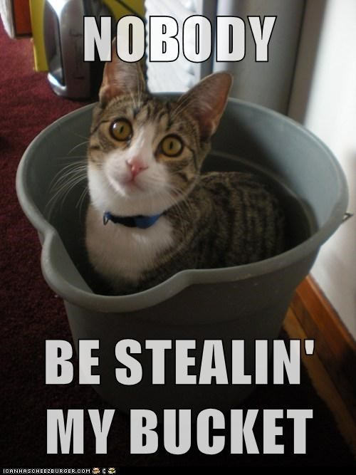 NOBODY  BE STEALIN' MY BUCKET