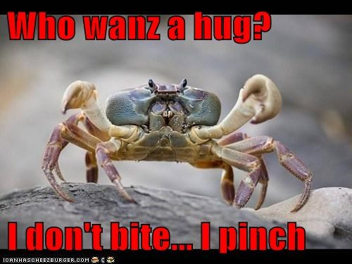 Who wanz a hug?  I don't bite... I pinch