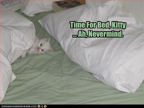 Time For Bed, Kitty ... Ah, Nevermind.