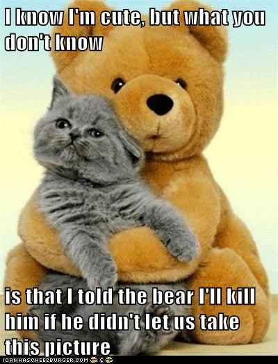 I know I'm cute, but what you don't know  is that I told the bear I'll kill him if he didn't let us take this picture