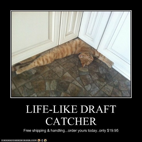 LIFE-LIKE DRAFT CATCHER