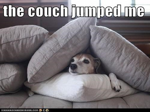 the couch jumped me