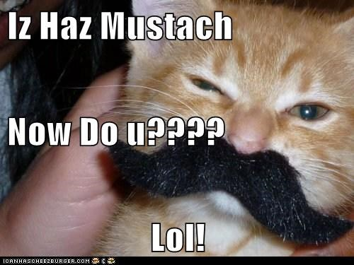 Iz Haz Mustach  Now Do u???? Lol!