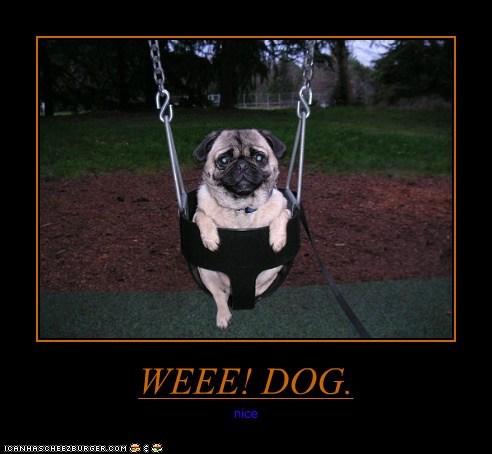 WEEE! DOG.