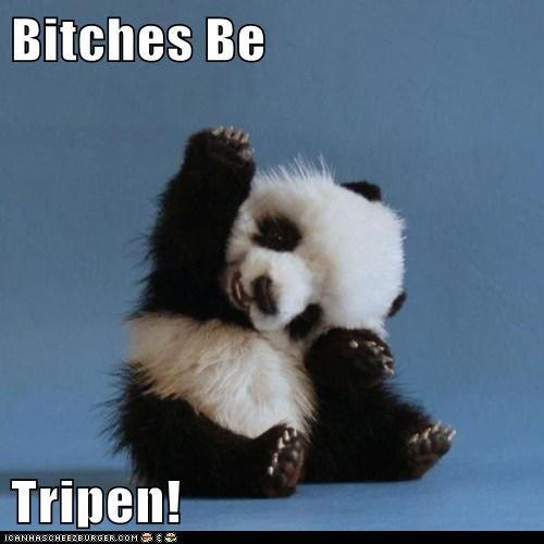 Be  Tripen!