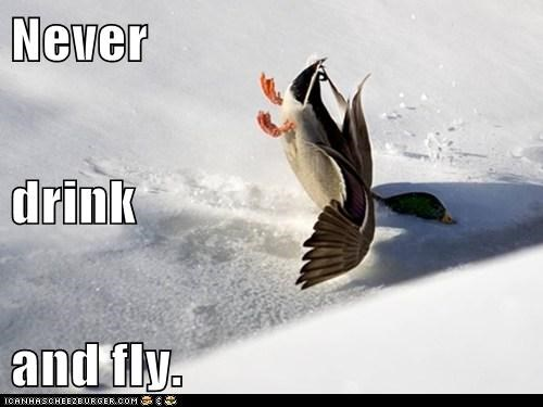 Never drink and fly.