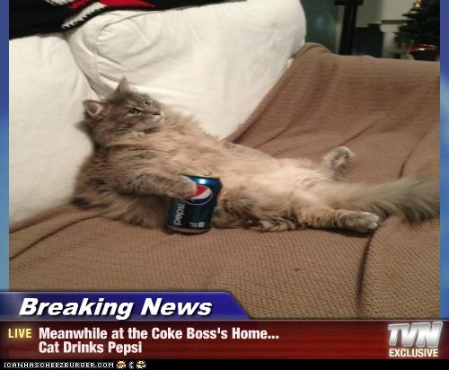 Breaking News - Meanwhile at the Coke Boss's Home... Cat Drinks Pepsi