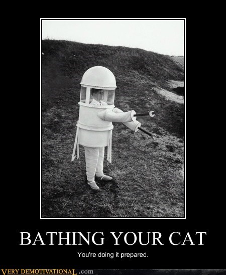 BATHING YOUR CAT